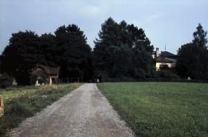 Tusculum Sicht vom Römerweg aus
