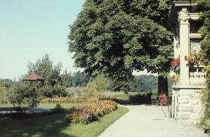 Erker und Kastanienbaum